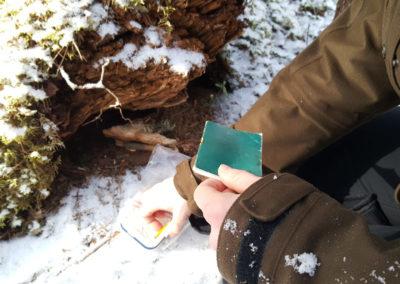 Opiskelija asettaa pientä vihkoa ja kynää muovirasiaan, joka on puunjuurakon kolossa.