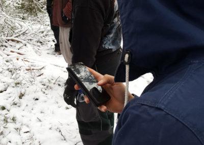 Opiskelijat metsässä etsimässä geokätköä kännykän avulla.