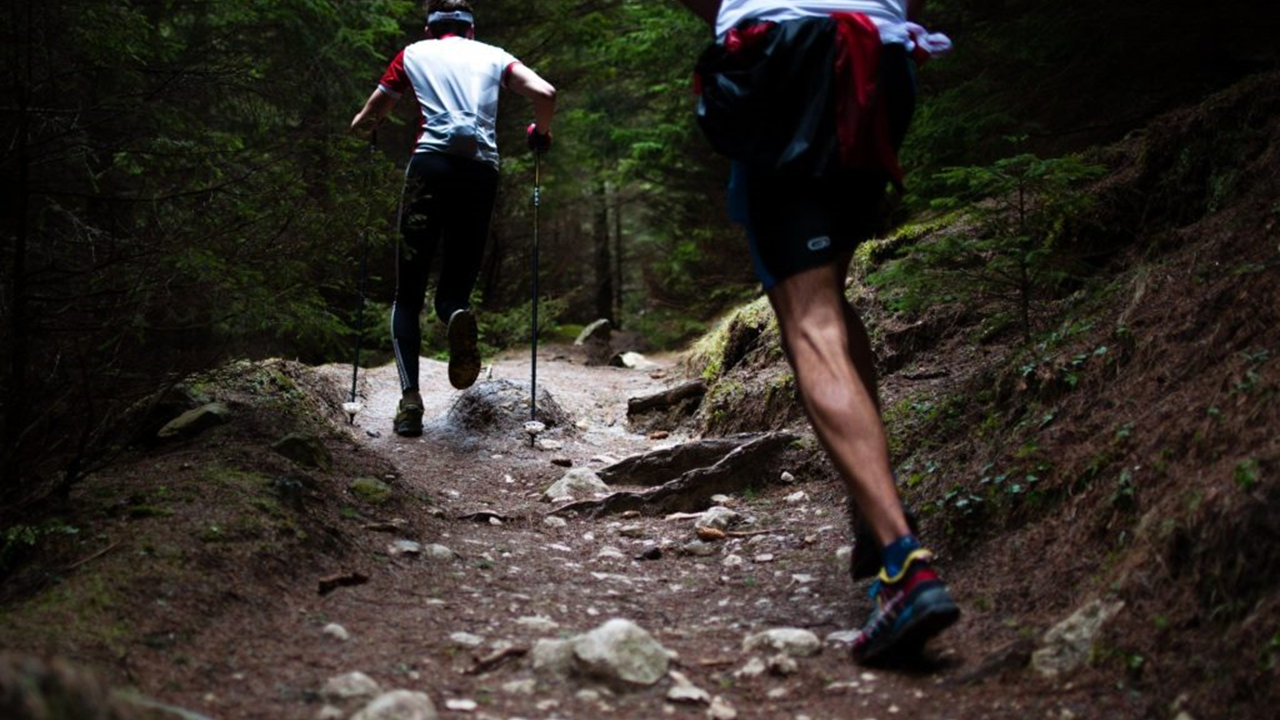 Kaksi henkilöä juoksee metsäpolulla